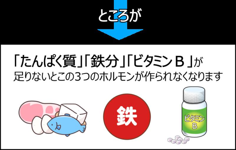 たんぱく質 鉄分 ビタミンB オーソモレキュラー栄養療法